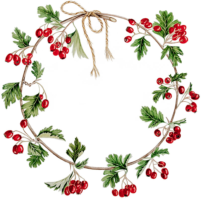 Christmas wreath © Eve Lawson