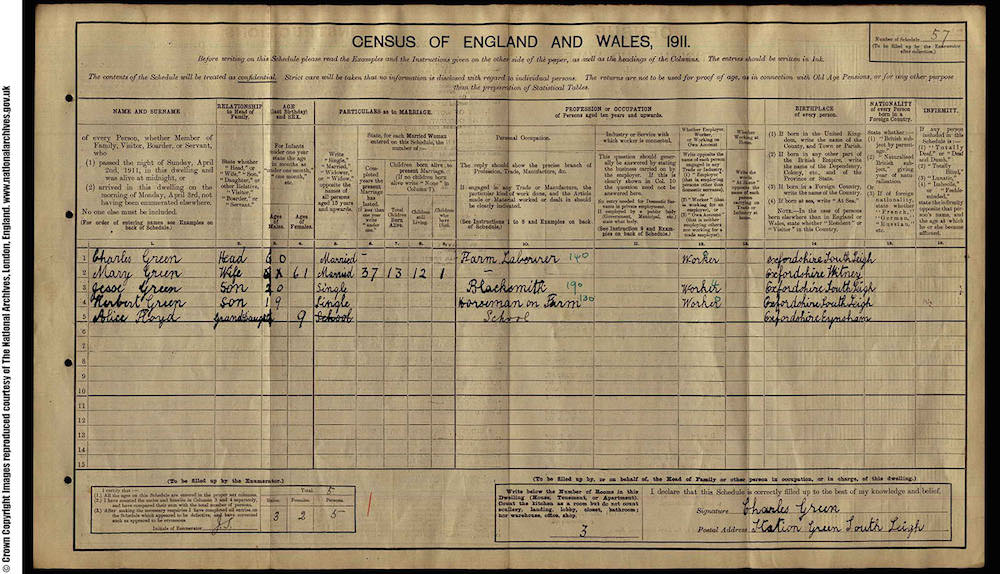 1911 Census - Herbert Green