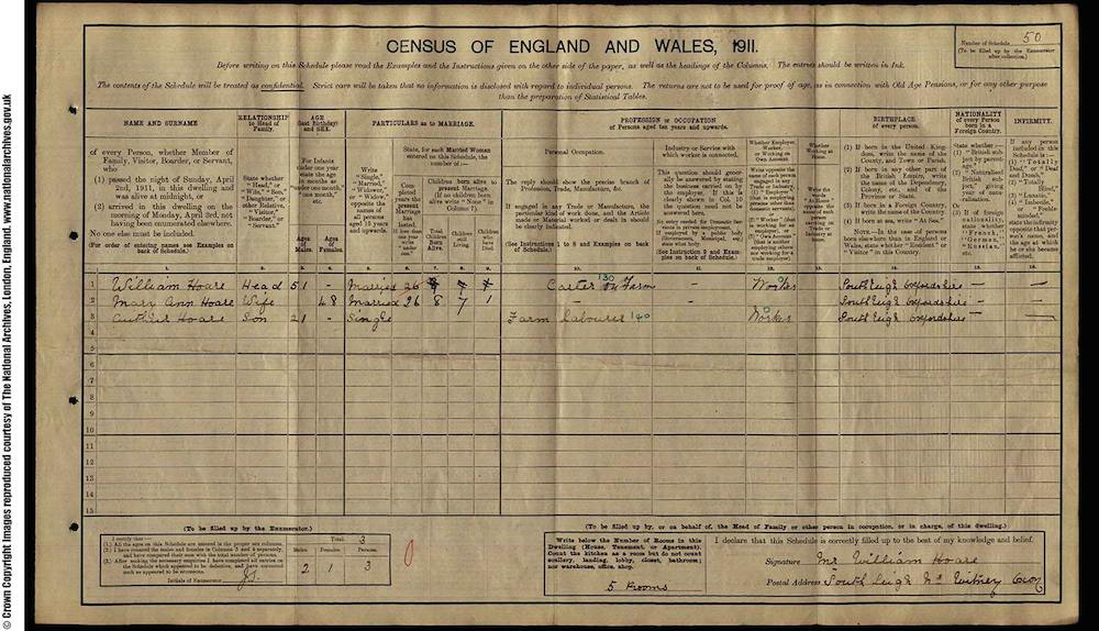 1911 Census - Albert Robert Hoare